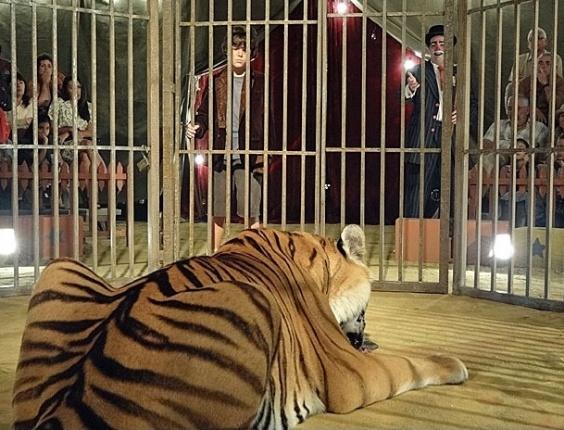 """Carlos tem o dom de domar animais, mas isso era explorado no circo pelo padastro, Virgílio, que o obrigava a ser """"domador de feras"""". No ar dia 5/3/12"""