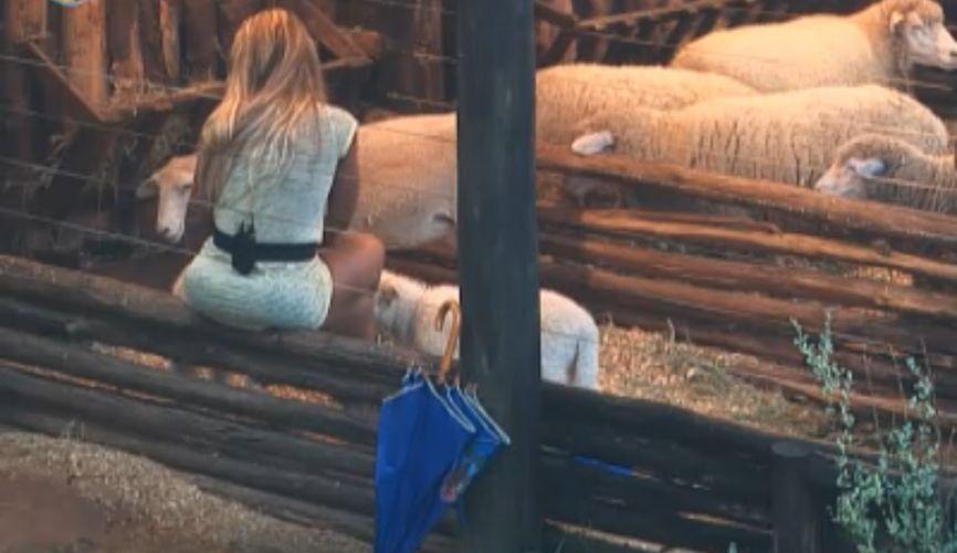 Valesca despede-se das ovelhas(09/10/11)