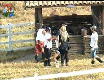 Depois de muito trabalho os peões conseguiram colocar os porcos de volta no cocho (22/7/11)