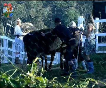 Dinei, Joana e Monique ajudam Duda a cuidar das vacas (25/7/11)