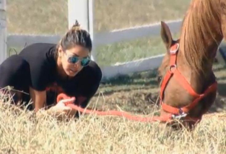 A égua Boderek deu trabalho para Dani Bolina em seus primeiros dias na Fazenda (19/8/11)