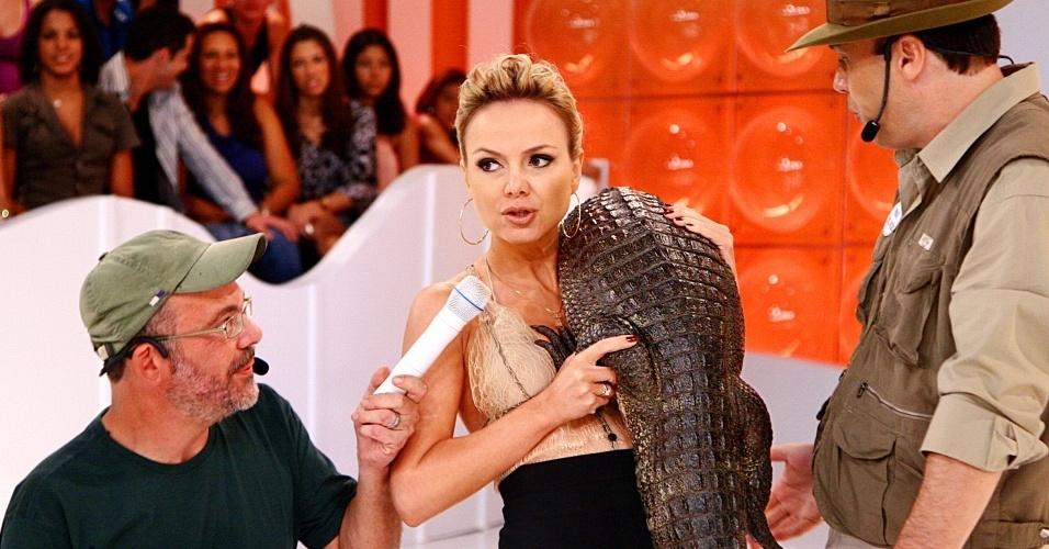 A apresentadora leva um abraço de um jacaré adulto no programa