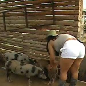 Mulher Melancia cuida dos porcos (22/11/10)
