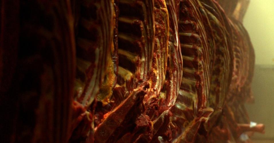 """O consumo de carne de cavalo será abordado no episódio sobre """"Dietas Exóticas"""", no programa """"Tabu Brasil"""""""
