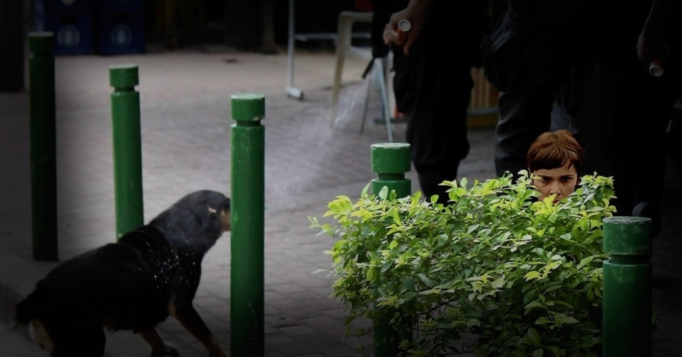 Com medo de também ser atingida por um spray de pimenta disparado por um policial, Nina se esconde atrás de um arbusto