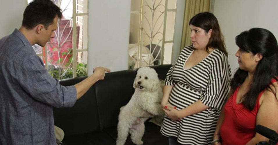 Alexandre Rossi ajuda pessoas com problemas de comportamento com seus animais
