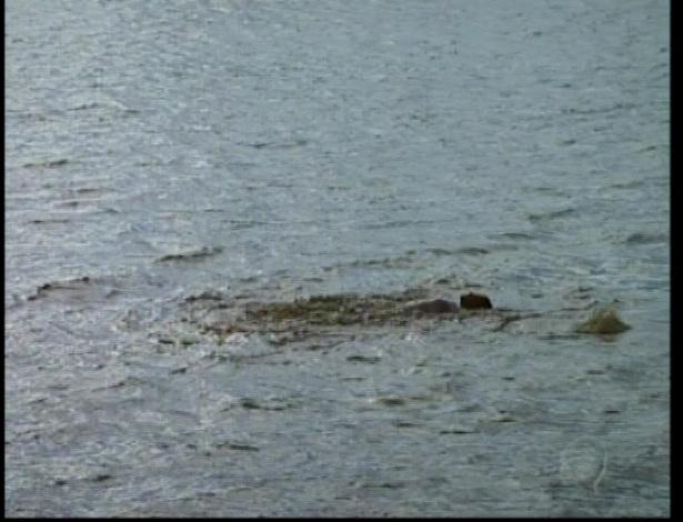Piranhas comem o dorpo de Décio