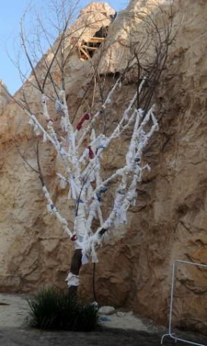 Detalhe para a árvore com panos amarrados em meio às formações rochosas típicas da região (26/10/2012)