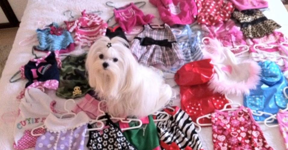 """Emily tem mais de 60 roupas em seu armário e usa muitas delas em """"Salve Jorge"""""""