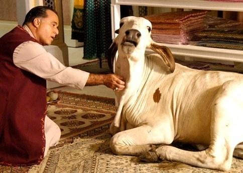 """Emilia era a vaca sagrada de Opash(Tony Ramos) em """"Caminho das Índias"""" (2009) de Glória Perez"""