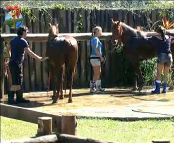 João Kléber, Taciane e Anna Markun dão banho nos cavalos (26/7/11)
