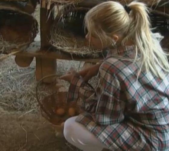Monique recolhe ovos das galinhas e conversa com as aves (16/8/11)