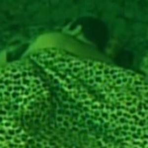 Rafa é o último a dormir (25/2/12)