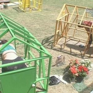 Eliane e Elenita permanecem nas gaiolas (29/1/10)