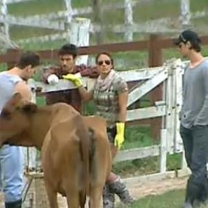 Novo fazendeiro inspeciona peões em suas tarefas (9/10/10)