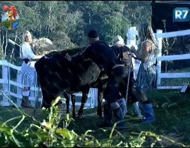 Dinei e Joana Machado ajudam Duda Yankovich com a vaca (25/7/11)