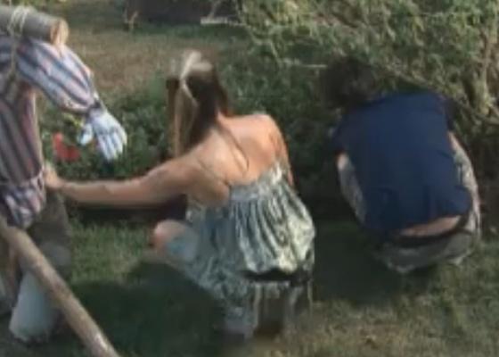 Marlon e Joana Machado mexem na horta (21/09/2011)